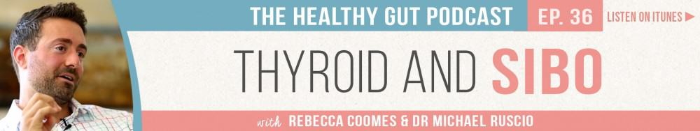 Rebecca Coomes The Healthy Gut with Dr Michael Ruscio on Thyroid and SIBO